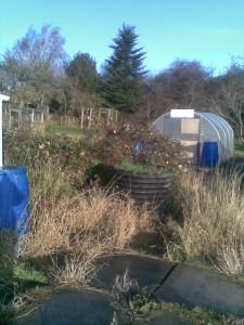 January 2012 - My New 4th Plot