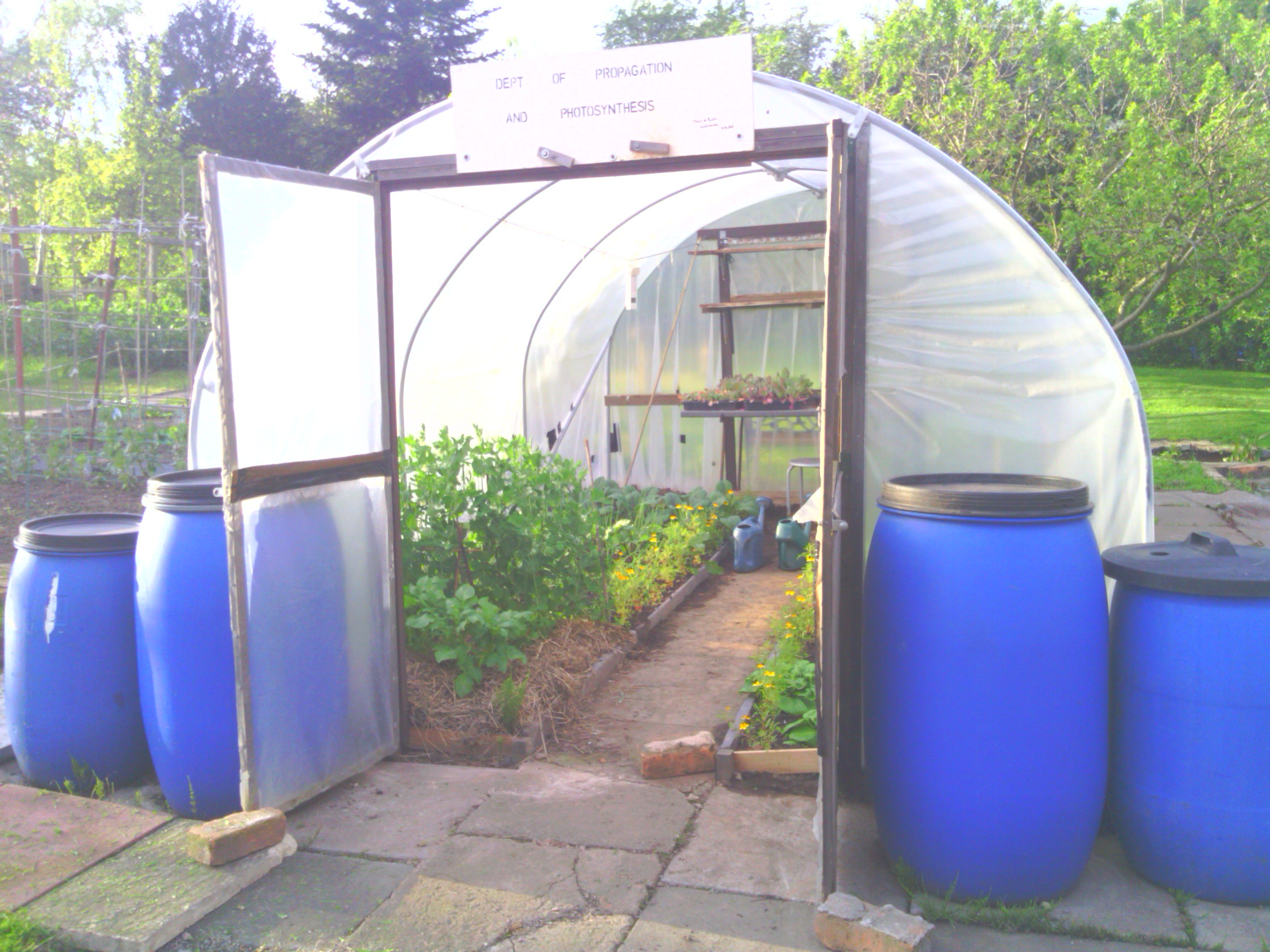IMG_20120516_191255 & A Year Of Growing In A Polytunnel u2013 My Review | not just greenfingers