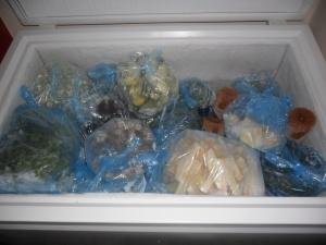 One of my threes freezers