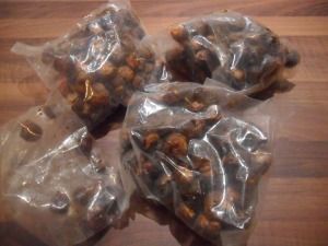 My remaining soap nuts