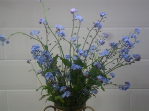 'Forget-me-nots' from my allotment