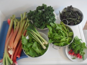 'Hungry Gap' Vegetables