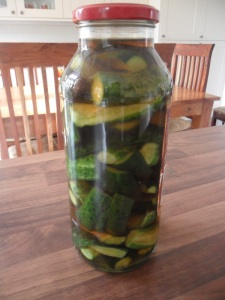Gherkins that I pickled this week