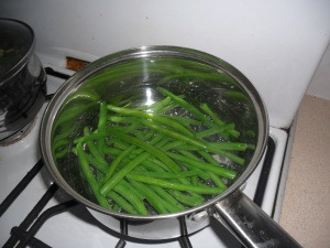 'Maxi' frenchbeans grown at my allotment in the past